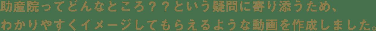 動画の紹介文